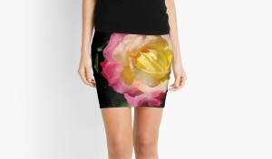 Macro Magenta and Yellow Rose Zazzle